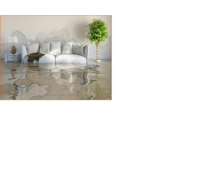Water Damage Dos & Don'ts when Faced with a Water Damage in Columbia