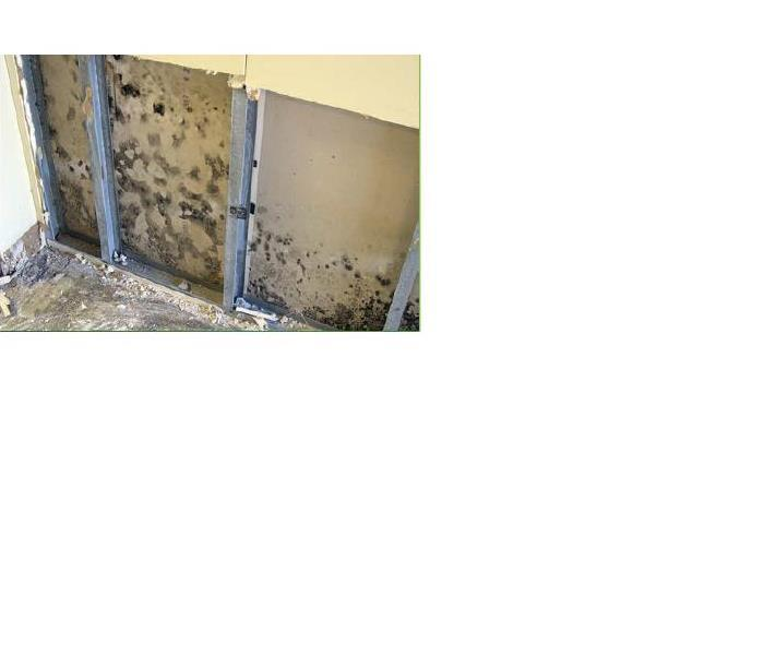 Mold Remediation Mold Remediation and Restoration in Boone and Howard Counties